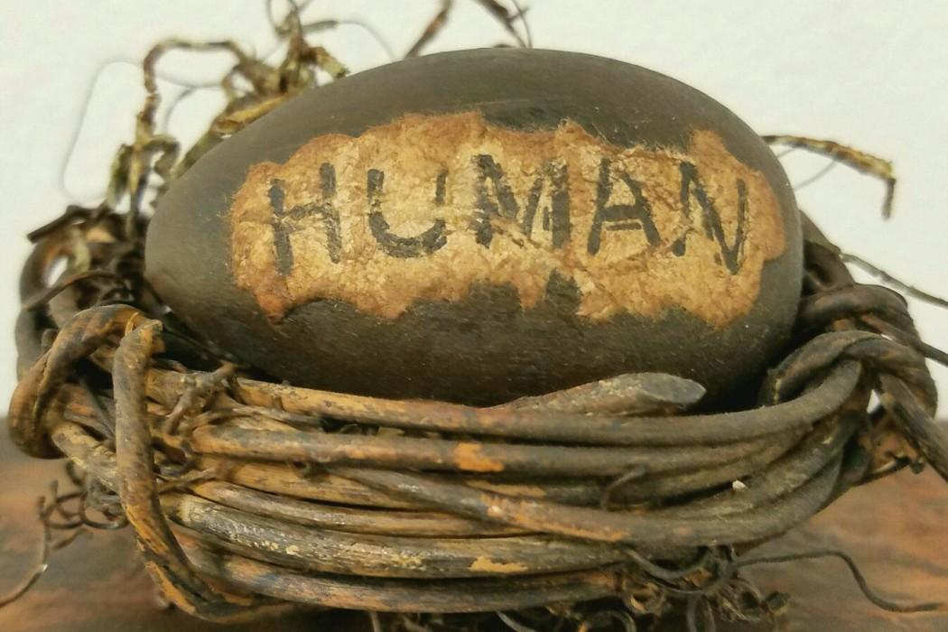 Strange Fruit - Human Egg